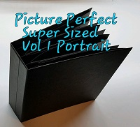 Picture Perfect Vol 1 Portrait Super Size by Pattys Crafty Spot